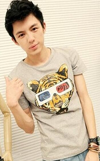 T Shirt With Tiger Print (Small Build)